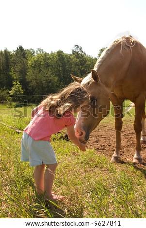 a little girl feeding grass to a horse - stock photo