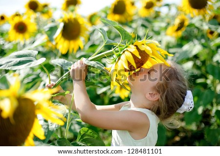 A little girl in the field smelling a sunflowers - stock photo