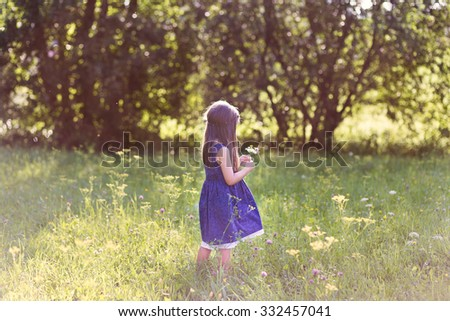 A little girl playing in the field, collecting flowers in the backlight - stock photo