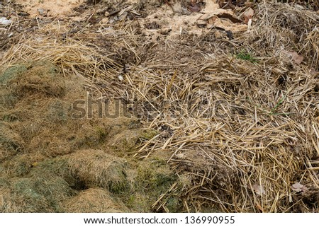 a little hill with biological rubbish - stock photo