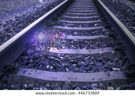 a little tree vegetate among the railway, flare effect added, filtered image, abstract color process background,selective focus - stock photo