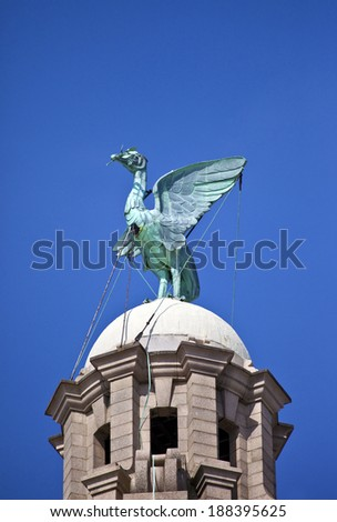 A Liver Bird statue perched ontop of the Royal Liver Building in Liverpool. - stock photo