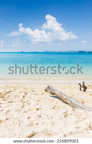 a log is on the beach and a boat is in the sea with blu sky - stock photo