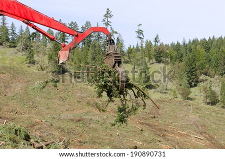A log loader or forestry machine moves fresh cut logs for loading on a log truck at the site logging landing in southern Oregon - stock photo
