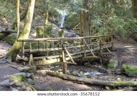 A log trail bridge in Washington