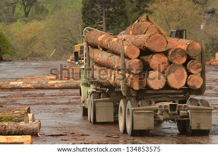 A log truck delivers a load of logs to the log yard at a lumber processing mill that specializes in small logs - stock photo