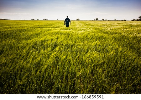 a lone man walking in a big green field - stock photo