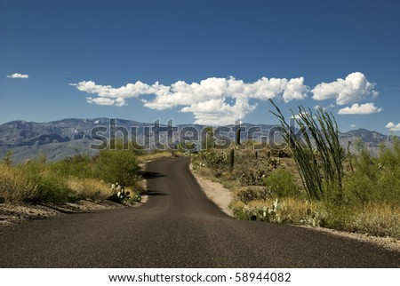 A lone road through the desert. - stock photo