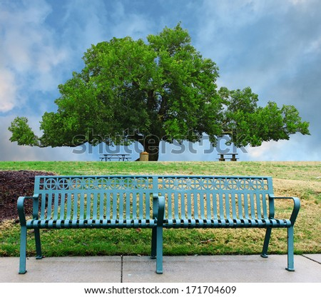 A lone single green metal park bench on the sidewalk below a small hill with a large oak tree in the park in the background - stock photo