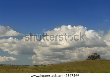 A lone tree on a California hill under a cloud filled sky - stock photo