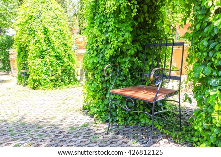 a lonely chair in the garden