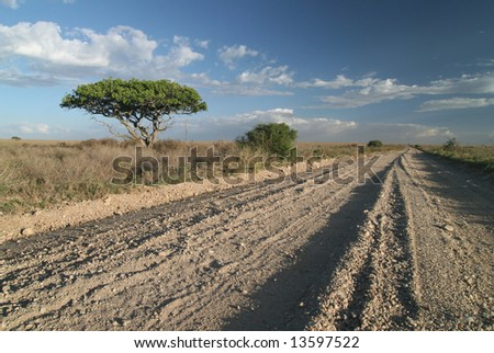 A lonely road track on the deep african savanna. Serengeti park. Tanzania