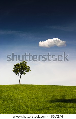A lonely tree is standing on the top of a hill. There is a clear blue sky above and a lonely white cloud.