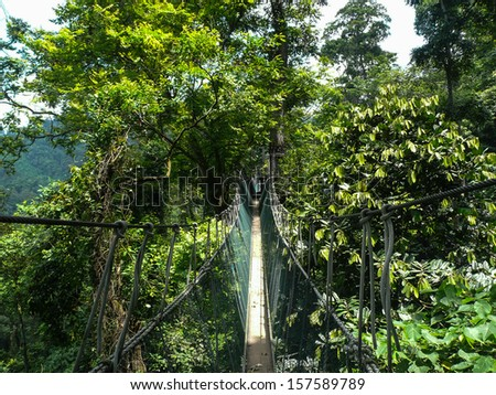 A long elevated walkway high up in the canopy of the rainforest in Taman Negara National Park, Malaysia. - stock photo