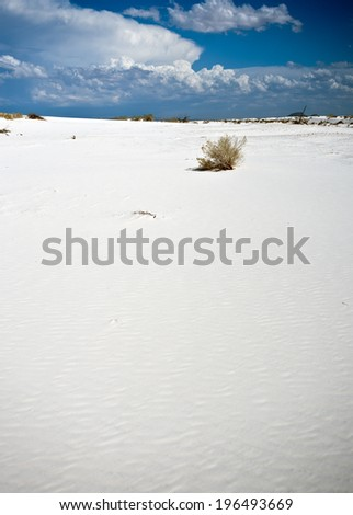 A long expanse of white sand ending at a blue cloudy horizon.