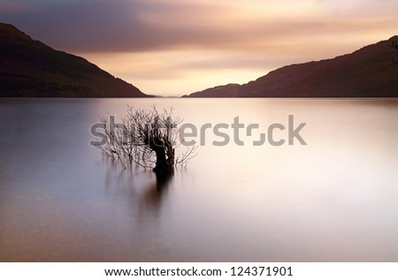 A long exposure near Sunset from the shores of Loch Lomond with a small tree partially submerged in the water - stock photo