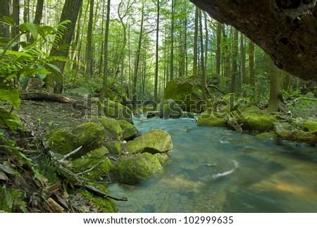 A long exposure of Falls Creek in the Mountain Bridge Wilderness area on the Blue Ridge Escarpment. - stock photo