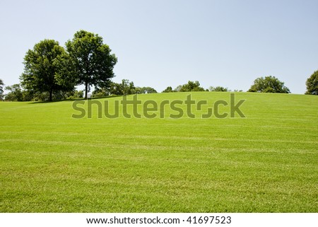 A long green grassy hill with trees in a public park