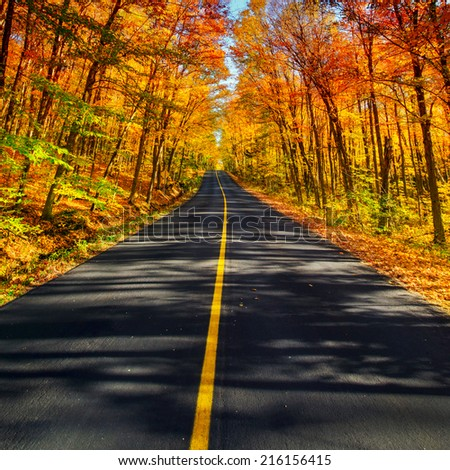 A long two lane rural road running through a colorful vibrant treed corridor landscape during the autumn season.  - stock photo