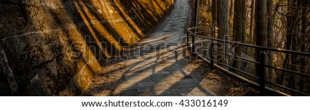 A long way in forest. - stock photo