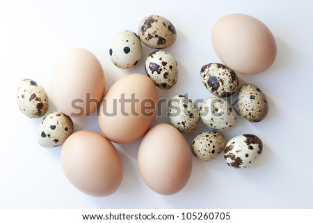 a lot of different eggs - stock photo