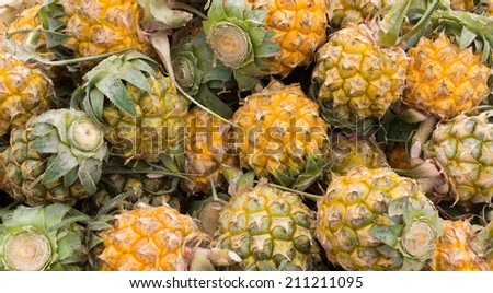 A Lot of fresh Pineapple fruit in local market - stock photo