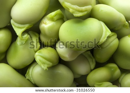 A lot of green broad bean from my kitchen garden - stock photo