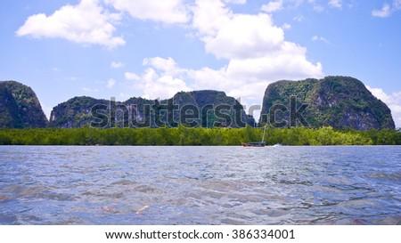 A lot of Green Mangrove, Phang Nga Bay National Park, Thailand - stock photo