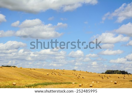 A Lot Of Haystacks On The Field In Lithuania - stock photo