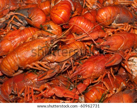 a lot of hot fresh boiled red crawfish - stock photo