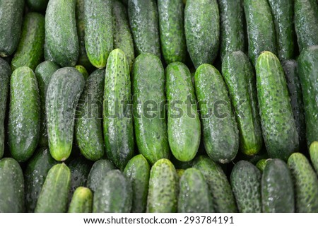 a lot of neatly folded clean green cucumbers