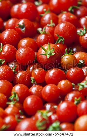A lot of organic red cherry tomatoes - stock photo