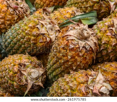 A lot of pineapple fruit at a street market - stock photo