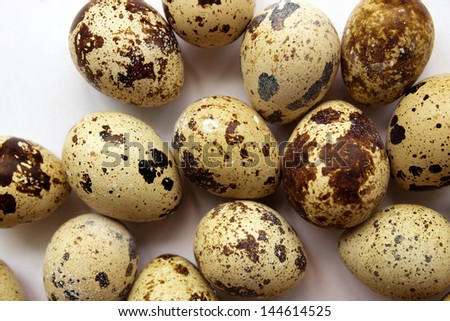 A lot of Quail Eggs on white