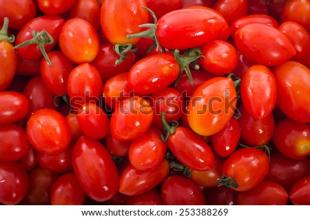 a lot of red tomatoes background - stock photo