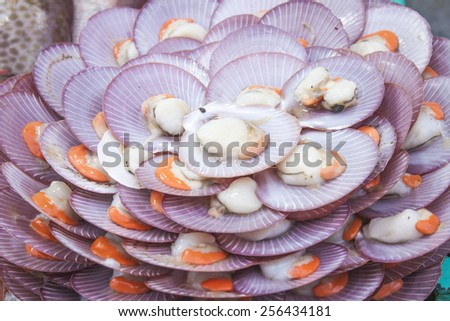 A lot of shellfish meal, at a restaurant - stock photo