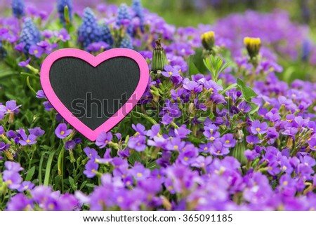 a lot of spring flowers with a pink heart  - stock photo