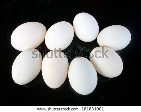 A lot of white eggs