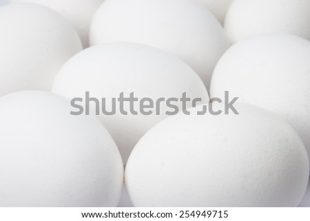 A lot of white eggs on a white background  - stock photo