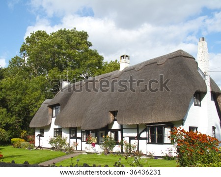 a lovely picture postcard thatched white cottage - stock photo
