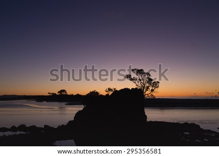 A lovely silhouette of a winter tree against the river's horizon at the Whakatane River in Whakatane, New Zealand. A beautiful feast for the eyes and great for many ideas and concepts. - stock photo