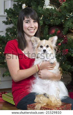 A lovely young girl in front of a Christmas tree holding her little dog. - stock photo