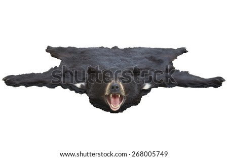 A low angle view of a black bearskin rug isolated on white background - stock photo