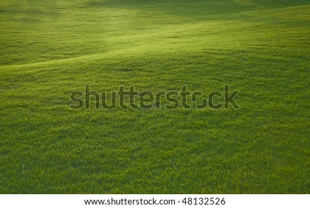 A lush green lawn in perspective. - stock photo