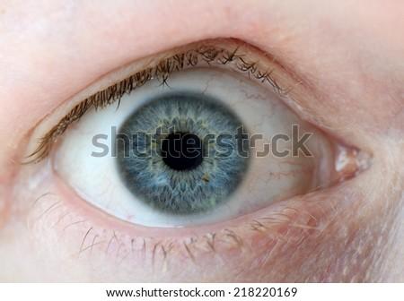 A macro of a human eye - stock photo