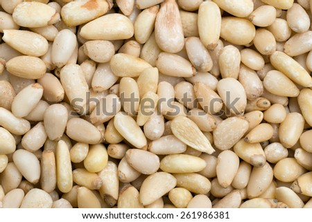 A macro photograph of pine nuts, also called pinon nuts.  - stock photo