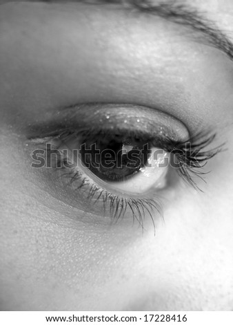A macro shot of a pretty eye in black and white. - stock photo