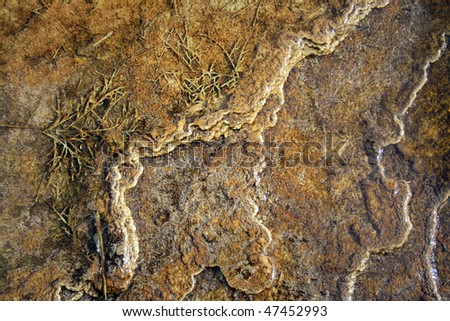 A macro shot of a silted stream bed in Yellowstone National Park. - stock photo