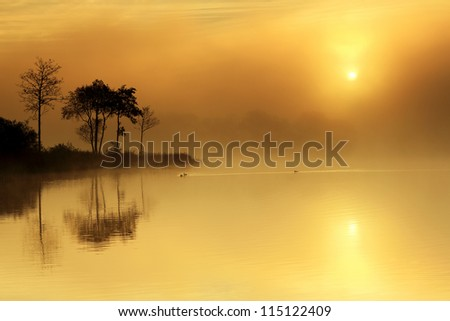 A magical moment on the shores of Loch Ard as the Sun tries to break through the mist, with trees reflecting in the still water. Stirlingshire, Scotland - stock photo