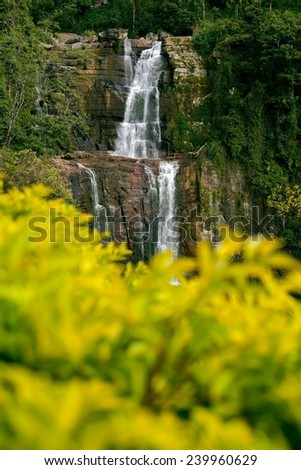 A majestic mountain forest cascade waterfall. A shot of magnificent Sri Lanka waterfall in the midst of the mountain forest - stock photo